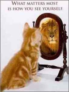 KITTEN HOW YOU SEE YOURSELF